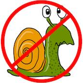 no-slow-website-snail