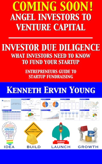 2-Investor-Due-Diligence-Dummy-Front-cover-ebook-kindle