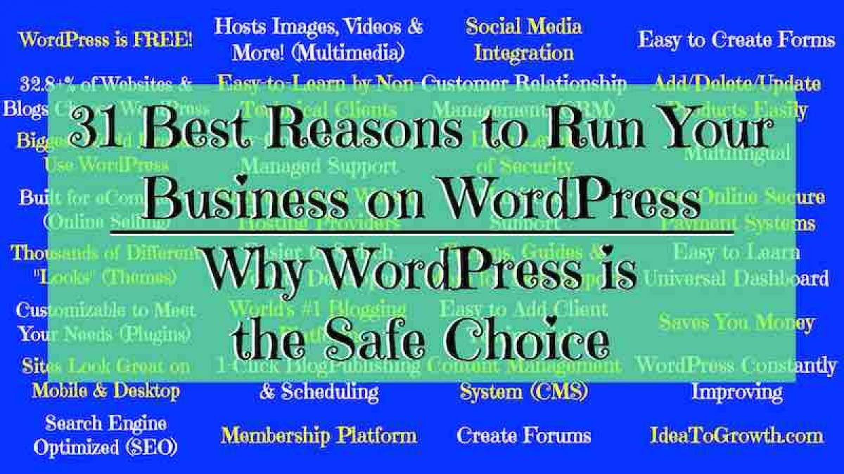 31 Best Reasons to Run Your Business on WordPress Why WordPress is the Safe Choice